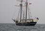 Brochure Tall Ship