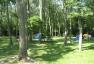 Campground 002