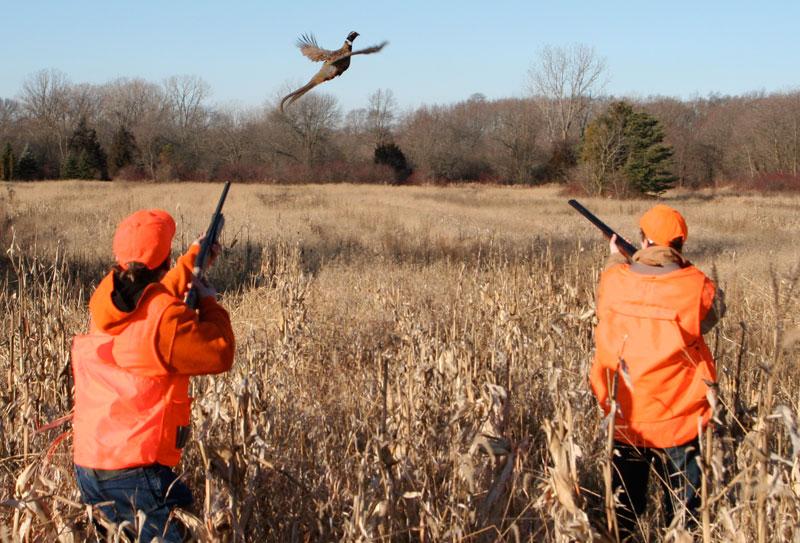 Lov na slikama i videu - Page 10 Pheasant-hunting-youth